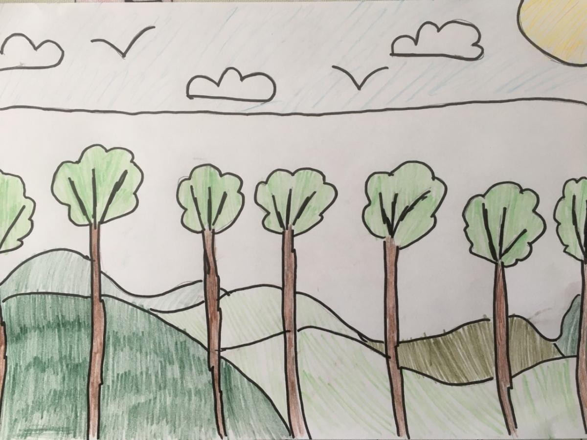 Landscape Colour Matilda 1