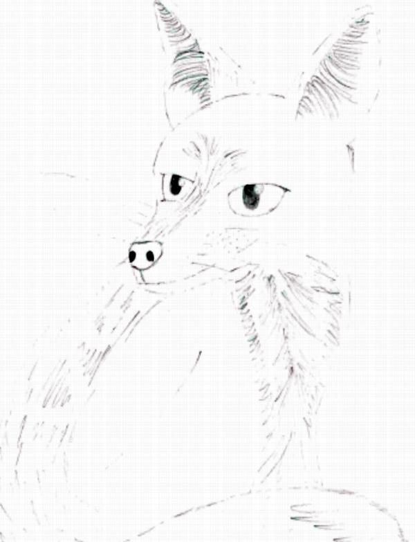 Fox Head Pencil